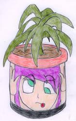 Flower pot by Maki12