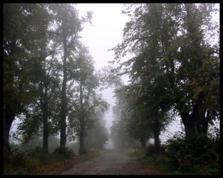 Morning Mist by hypnotic