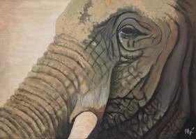 Elephant II by HerryTisco