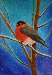 Bullfinch by Lughnara