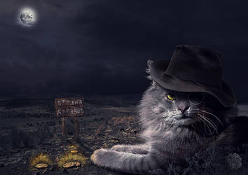 Cat Bazilio by Lughnara