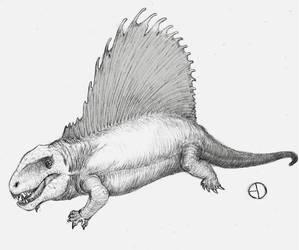 Dimetrodon by SaurArch