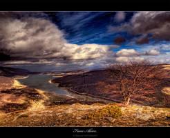 From Above.. by Bojkovski