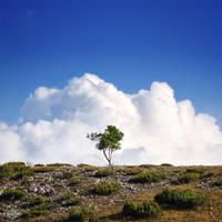 Confrontation to the clouds by Bojkovski