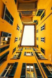 The Windows by Bojkovski