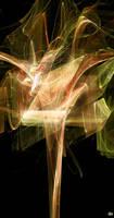 Phoenix Fractal Burst by ludd1te