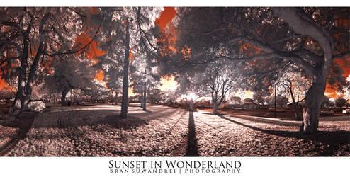 sunset in Wonderland by bransuwandrei