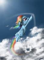 'The limit is the blue sky' by Neko-me