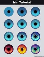 Iris. Tutorial + References by Anastasia-berry