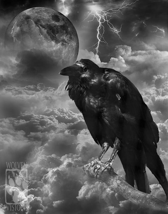 Raven by WolvenVisions