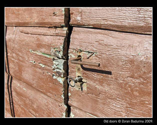 old doors by Figuritza