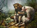 Poultices and Condolences by rah-bop
