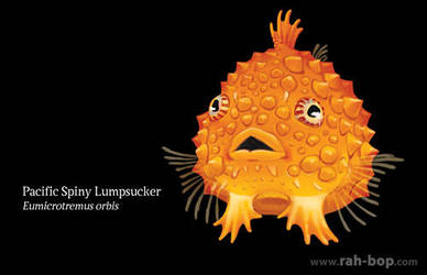 Pacific Spiny Lumpsucker by rah-bop