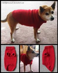 Doggy Sweater by Wildphoenix22