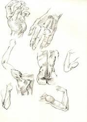 Sketch 7 by nilsvansante