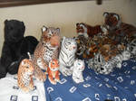 Big Cat Collection by 1Meh1