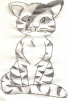Warrior Cat - Tigerstripe by 1Meh1