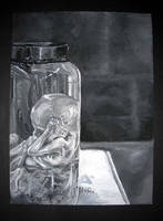 Fetus in Jar by hello-magpie