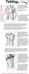 Male torso tutorial by Xannijn