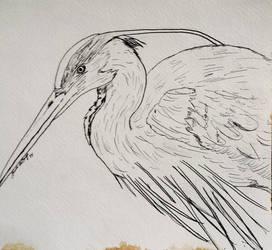 Dip Pen Test: Blue Heron by Dark-Link-Kyra05