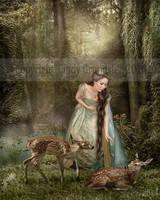 Princess II by CindysArt