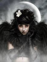Dark Angel by CindysArt