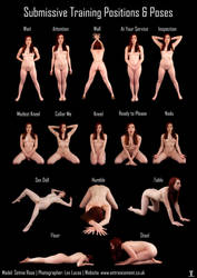 Submissive Pose Chart - Setina Rose by LexLucas