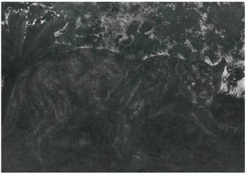 Pantera nera by AndreaSchillaci