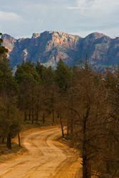 Bunyeroo Gorge 2 by RadishStick