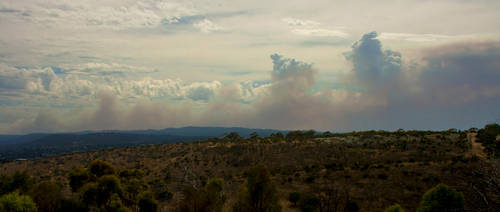 Bushfire by RadishStick