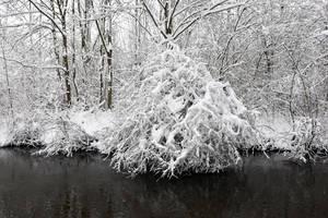 4638 Snowscape #2 by RealMantis