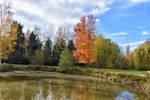 1756 Colors of autumn by RealMantis