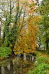 0928 Golden tree by RealMantis