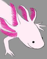 Axolotl Daily sketch #973 by GothicVampireFreak