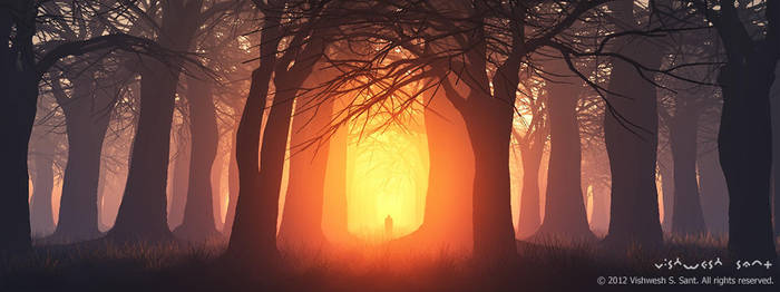 Solitude by Vishw