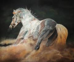 Libre by raulrk