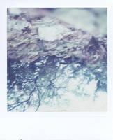 Cliff by nikixfm