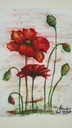 Poppy - aquarelle pencils by MelonekCZ