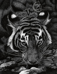 Tiger Dots- Pointillism by razorsfire