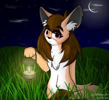 Lantern by JKNewLife