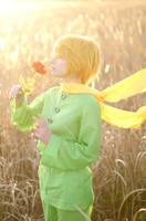 The Little Prince by elara-dark