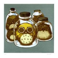 Jarred Owls by siowowo