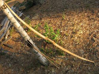 Birch flatbow by taika-kim