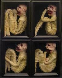 Specimen Boxes by strangedolls