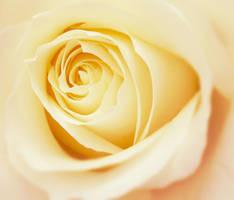 Sweet sorrow by Marianna9