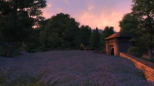 Blue Meadow by CareldeWinter
