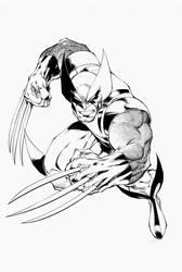 Wolverine by TimTownsend