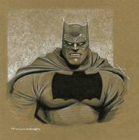 Dark Knight Batman by TimTownsend