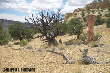 Self-Portrait Devils Canyon by archambers