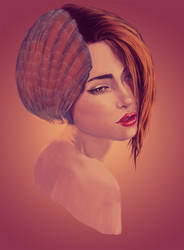 Shell by Juneel